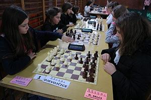 Županijsko prvenstvo u šahu